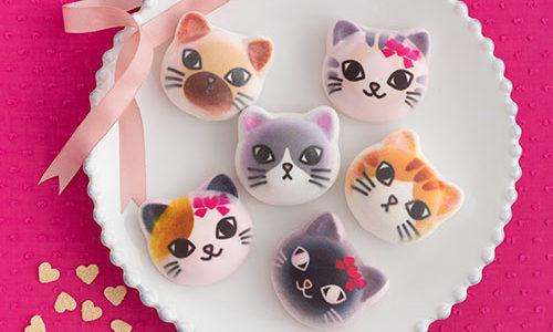 ニャにこれかわいい!フェリシモ猫部から、ツンデレにゃんのニャシュマロバレンタインが新バージョンで登場