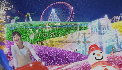 桜とイルミネーションのコラボ🌸✨関東最大600万球の中で味わう「夜桜イルミリオン」